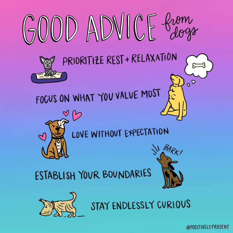Positively-Present-Dog-Advice